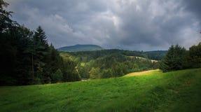Hochwald w Saxony Zdjęcia Stock