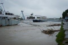Hochwasser auf der Donau in Slowakei Stockfoto