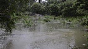 Hochwasser nach starkem Regen in Brisbane, Queensland stock footage