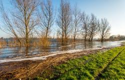 Hochwasserniveau im Fluss Stockfotos