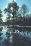 Hochwasserniveau im Fluss Gauja, nahe Valmiera-Stadt in Lettland S Lizenzfreie Stockfotografie