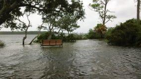 Hochwasserniveau während des tropischen Sturms Stockfotografie