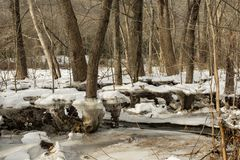 Hochwasserschaden von einem Eis-Stau Stockbild