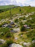 Hochwechsel. Hiking path in summer,Hochwechsel, Lower Austria,  Austria Royalty Free Stock Image