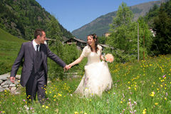 Hochzeit lizenzfreie stockbilder