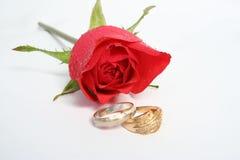 Hochzeit Lizenzfreie Stockfotografie