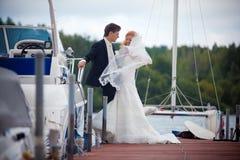 Hochzeit, Braut und Bräutigam, Liebe stockbild
