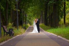 Hochzeit, Braut und Bräutigam, Liebe lizenzfreies stockbild
