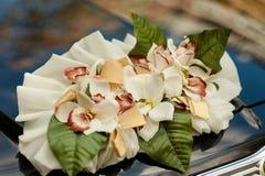Hochzeit Cortege, liefert den Bräutigam und die Braut an die Hochzeitssite Lizenzfreies Stockbild