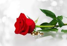 Hochzeit, Ehering, Rose Lizenzfreies Stockfoto