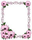Hochzeit, Partyeinladung Purpur-Gänseblümchen Stockbild