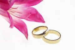 Hochzeits-Bänder Lizenzfreies Stockbild