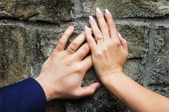 Hochzeits-Bänder Lizenzfreie Stockfotos