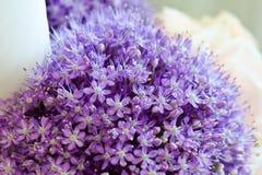 Hochzeits-Blumen-Dekoration - malvenfarbenes Liliac stockfotografie