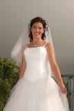 Hochzeits-Braut stockfotos