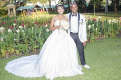 Hochzeits-Braut-Bräutigam Stockbild