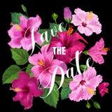 Hochzeits-Einladungs-Schablone mit purpurroten Hibiscus-Blumen Speichern Sie die Datums-Blumenkarte für Grüße, Jahrestag, Geburts lizenzfreie abbildung