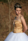 Hochzeits-Kleid lizenzfreie stockfotografie