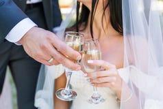 Hochzeits-Paare rösten die Champagnergläser Lizenzfreie Stockbilder