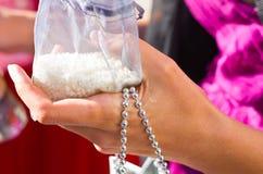 Hochzeits-Quetschkissen-Reis-Körner lizenzfreie stockbilder