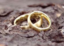 Hochzeits-Ringe 2 Lizenzfreie Stockfotografie