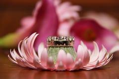 Hochzeits-Ringe auf rosafarbener Blume Stockbild
