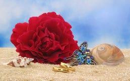 Hochzeits-Ringe auf Strand Lizenzfreie Stockfotos