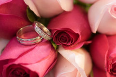 Hochzeits-Ringe in den Rosen Stockbilder