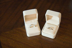 Hochzeits-Ringe im Schnee Lizenzfreie Stockfotos