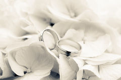 Hochzeits-Ringe mit Blumen Stockbilder