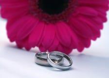 Hochzeitsbänder und rosafarbener Gerbera Lizenzfreie Stockfotos