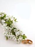 Hochzeitsband, Hintergrund Stockbilder