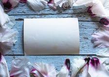 Hochzeitsblume Pfingstrosenblumenblätter auf blauer Tabelle von oben Flache Lage s Lizenzfreie Stockfotos