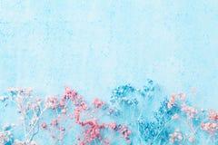 Hochzeitsblumengrenze auf Draufsicht des blauen Pastellhintergrundes Schönes Blumenmuster flache Lageart Frauen- oder Muttertag G Lizenzfreies Stockfoto