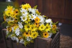 Hochzeitsblumenstrauß blüht die gelben und weißen Gänseblümchen Stockfotos