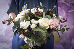 Hochzeitsblumenstrauß einer Braut von einer Rose, eine rosa Gartennelke, Eukalyptus in der Hand der Braut Stockfotografie