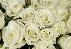 Hochzeitsblumenstrauß von weißer Rose Stockbilder