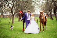 Hochzeitsbraut und -bräutigam gehen mit Pferdeim frühjahr Garten Stockfotos
