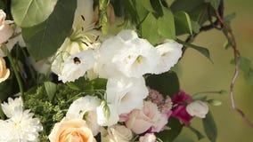 Hochzeitsdekorationen für Hochzeitszeremonie im Freien Hölzerner Bogen verziert mit den weißen und rosa Rosen Bienen und Hummeln stock video