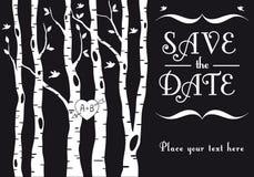 Hochzeitseinladung mit Birkenbäumen, Vektor Stockfotos