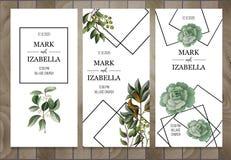 Hochzeitseinladung mit den Blättern, saftig auf hölzernem Hintergrund Eukalyptus, Magnolie, Farn und andere Vektorillustration stock abbildung
