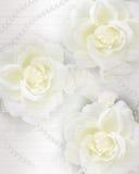 Hochzeitseinladungsrosen und -perlen Stockfotografie