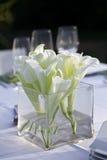 Hochzeitsempfang. Stockbilder