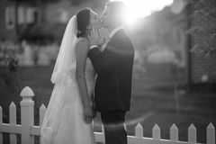 Hochzeitsfoto Stockbild