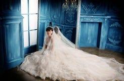 Hochzeitsfrauenportrait Lizenzfreie Stockbilder