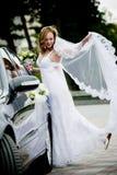 Hochzeitsgeschenk Lizenzfreies Stockfoto