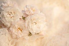 Hochzeitsgoldringe auf einem Spitzegewebehintergrund Lizenzfreie Stockfotografie