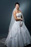 Hochzeitskleid und -schleier stockfoto