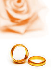 Hochzeitskonzept - Rosen und Ringe Lizenzfreie Stockfotografie