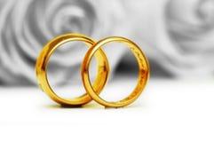 Hochzeitskonzept - Rosen und Ringe Lizenzfreie Stockfotos